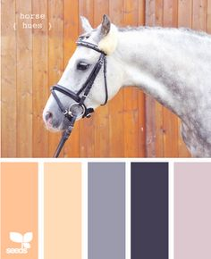 I love this beautiful horse and those last 3 colors.