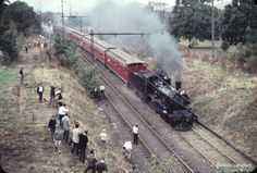 Inner Circle Railway (steam hauled tourist run) - through Princess Park, North Carlton. Carlton North, Royal Park, Inner Circle, The Old Days, Steam Engine, Melbourne Australia, Back In The Day, Vr, Old Photos