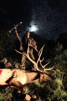 Elk Hunts in New Mexico
