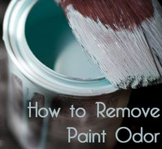 How to Remove New Paint Odor From Your Home