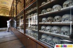 Puluhan tengkorak manusia tersusun dalam lemari yang ditampilkan di Museum Naturhistorisches (Museum of Natural History) di pusat kota Wina, Austria.