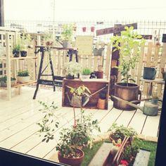 植物/雨***/木工/古い物/古道具/ウッドデッキ…などのインテリア実例 - 2015-05-16 11:13:51   RoomClip(ルームクリップ) Balcony Garden, Gardening, Lawn And Garden, Balcony Gardening, Horticulture