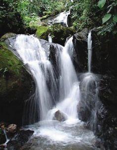 Cachoeira de Macacu, Rio de Janeiro http://www.atwrp.info/enjoi-atlantic-city-jacket-mens.html