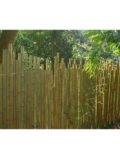 Pergola, Bamboo Fence, Fences, Decoration, Camping, Studio, Wood, Inspiration, Gardens