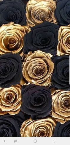 Ten Stereotypes About Black Flowers List That Arent Always True Black Flowers Wallpaper, Gold Wallpaper Background, Bling Wallpaper, Wallpaper Images Hd, Beautiful Flowers Wallpapers, Rose Wallpaper, Cute Wallpaper Backgrounds, Background Pictures, Gothic Wallpaper