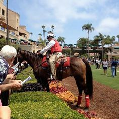 Have you heard that Del Mar Racing will be having two seasons this year? One in July and one in November!