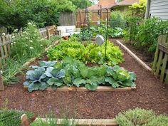 cant wait to garden again! this photo is mapped w/ neat ideas