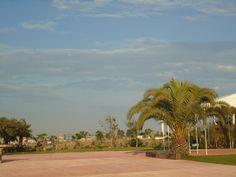 Vista de Jardín de Fiestas Calypso Gardens