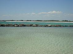 Shell Island near Panama City was a very nice beach and we found lots of shells!