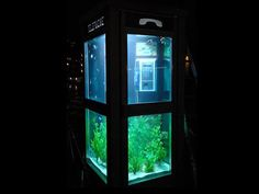 This unusual aquarium is part of a project developed in France. Benoit Deseille and Benedetto Bufalino were the ones that transformed several regular telephone booths into aquariums for the Lon Light Festival in France. It was a very interesting way of repurposing the old phone booths and of giving them a whole new function.