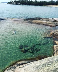 Secret Swimming Spots You Must Visit In Canada Nature's hidden gems. Katherine Cove in OntarioNature's hidden gems. Katherine Cove in Ontario Places To Travel, Places To See, Travel Destinations, Toronto, Ontario Travel, Summer Bucket Lists, Secret Places, Lake Superior, Canada Travel