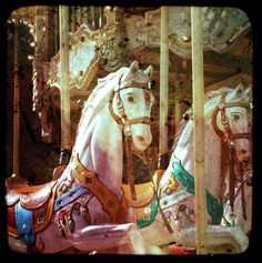 my kind of horse... carousel horse