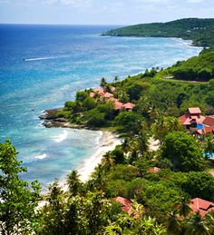 The Carambola Beach Resort on St. Croix!! Love this place too!!!