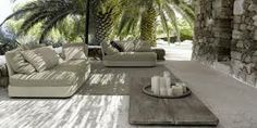 palm trees shade - Google Search