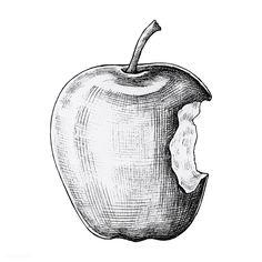 Download premium vector of Hand drawn bitten apple vector 1200183