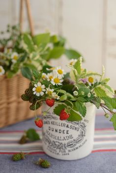 Herb bouquet by Atelier Sabrina