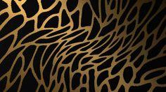photos leopard print wallpapers hd