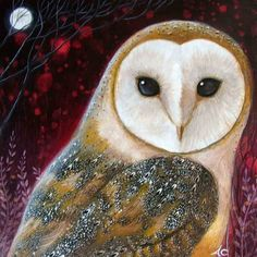 'Owl Power Animal' by Amanda Clark