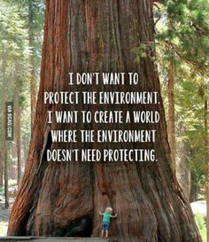 I don't want to protect the environment. I want to create a world where the environment doesn't need protecting this is a good quote this is a true factor Great Quotes, Quotes To Live By, Me Quotes, Motivational Quotes, Inspirational Quotes, Qoutes, Save Our Earth, Nature Quotes, Earth Day Quotes