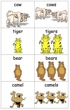 Cute Animal - Singular & Plural Small Cards PDF