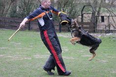 Wurfarm Nylcot in 3 Farben für den Schutzdienst-Hund