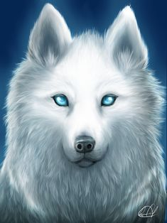 ...  Jordan The First Gaurdian Moon Wolf,Gave wolves a second chance to live some go to The Moon,other to the sun. Description from chickensmoothie.com. I searched for this on bing.com/images
