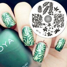 Born Pretty Nail Stamping Plates Nail Art Stamp Template Image Leaves Pattern