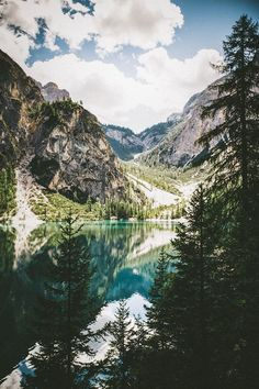 lake   nature   by elena morelli