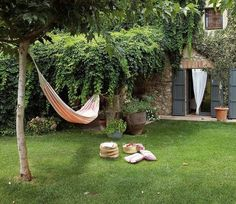 59 Best Jardín / Garden images | Country homes, Chile, Chilis
