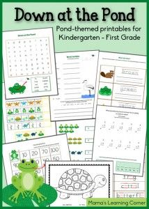 ... and Amphibians on Pinterest | Amphibians, Free Worksheets and Reptiles