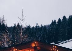Pic by Nadin Brendel Advent, Winter, Festive, Blog, Seasons, Cordial, Winter Time, Blogging, Seasons Of The Year