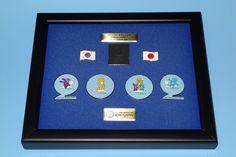 2002 FIFA World Cup Korea/Japan Limited Edition Framed Pin Set  | eBay