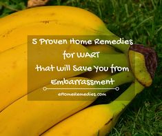 5 Proven Home Remedies for Wart that will Save You from Embarrassment