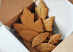 Image result for ginger snaps shaped like fall  leaves