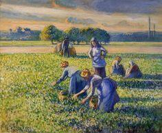 Jacob Camille Pissarro, picking peas,1887