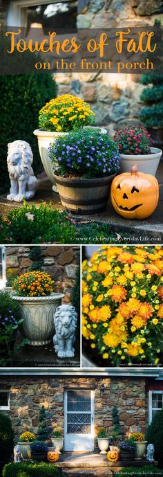Touches Of Fall on the Front Porch, Fall Decorating, Outdoor Fall Decorating, Decorating For Fall, Fall Plants on the Porch, Porch Jack O Lantern, Celebrating Everyday Life with Jennifer Carroll