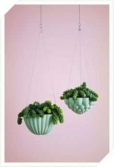 Hanging Houseplants - Think across, let your potted plants float in the air! This decoration idea wi Diy Hanging Planter, Hanging Planters, Hanging Baskets, Planter Pots, Hanging Gardens, Planter Ideas, Cacti And Succulents, Potted Plants, Indoor Plants