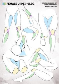 simplified anatomy 08 - female leg by mamoonart.deviantart.com on @DeviantArt