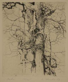 Ladislav Hanka - Oaks - etching - intaglio - printmaking - drawing - art - decor - nature