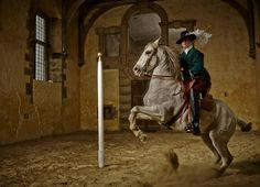 17th century horse dressage returned to the Riding House in Bolsover Castle in Derbyshire