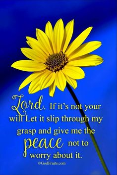 Lord, If it's not your will Let it slip through my grasp and give me the peace not to worry about it.