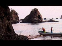 The Cove - trailer (2009 Sundance Film Festival audience winner)