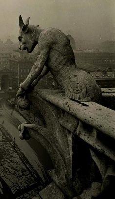 1910 Gargouille Notre-Dame