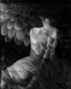Michele Clement.::double exposure with flower