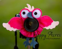 Lens Bling - Pink Macaw