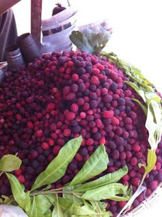 Taste of Nepal: Kaaphal or Kafal Fruit - काफल - (Bay-Berry)