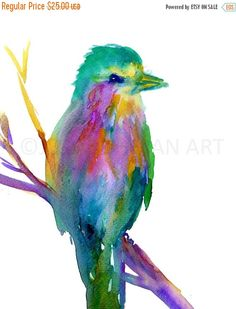 HUGE SALE Watercolor Print of Bird Lilac Breasted by JessBuhmanArt