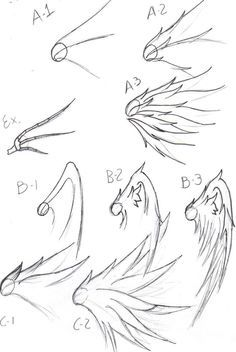How to draw wings step by step