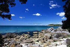 Mount Maunganui, Tauranga   © Elyse Childs Photography