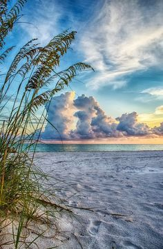 Sarasota Florida- been multiple times as my grandmother owns there for 6 mo of the year. Always lots to see and lots to do usually a good variety of weather - r.w